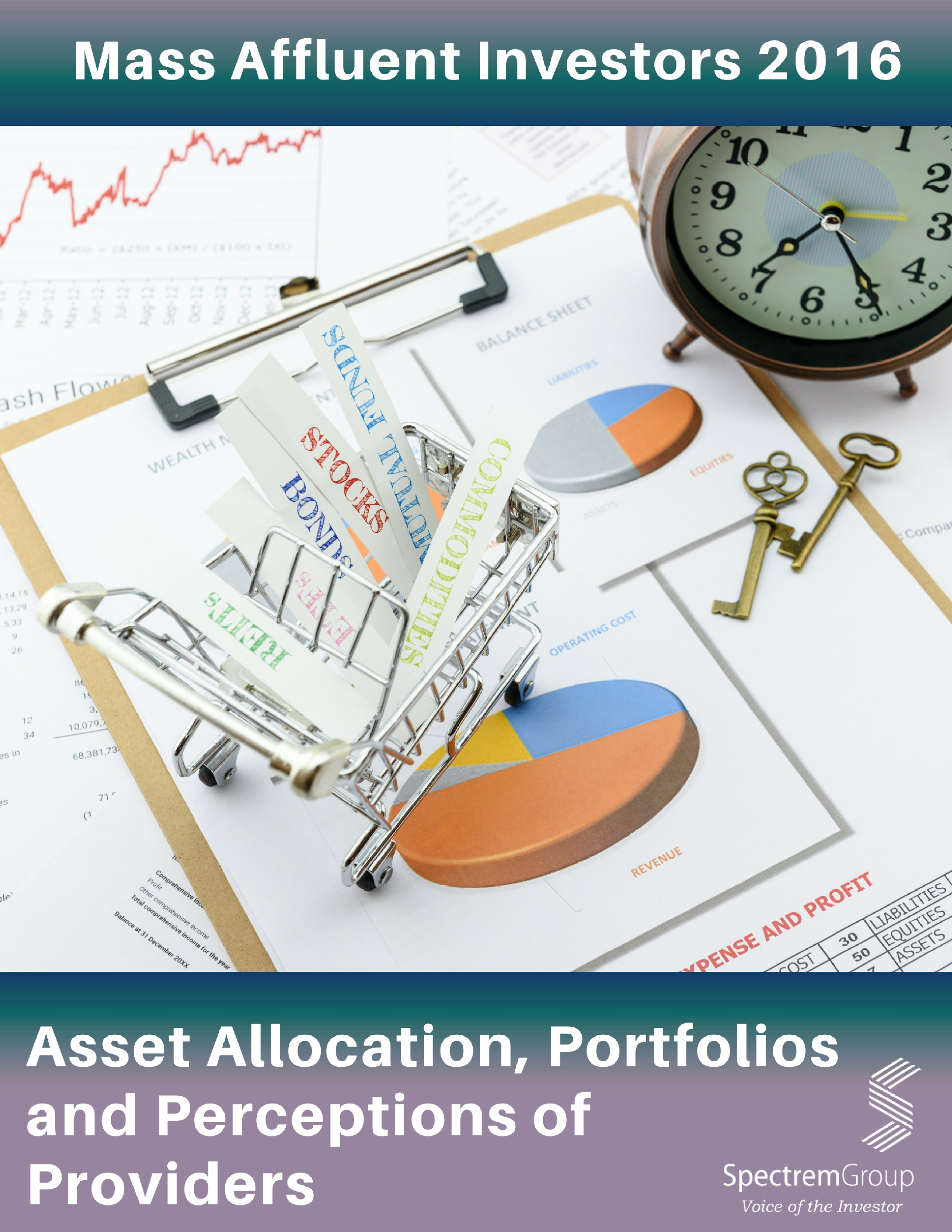 Asset Allocation, Portfolios and Primary Providers - 2016 Mass Affluent